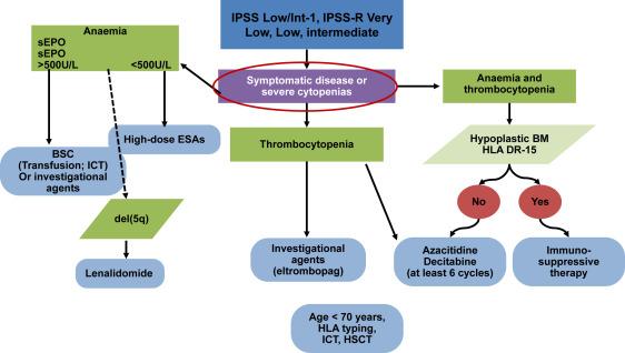 Myelodysplastic Syndrome (MDS) Treatment - Preleukemia